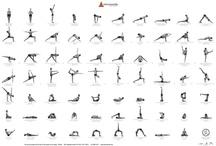 the class sun salutation yoga