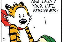 Calvin and Hobbies