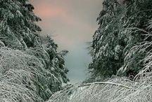 Vermont Winters
