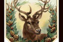 Christmas Planning / Old Bohemian Homestead Christmas Plan