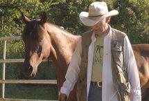 Horses & Omega 3s