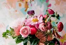 blossoms / by diana shraga