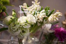 A Santa Chiara di Lecce:... / ...anemoni, tulipani e giacinti per sposi inglesi un po' bizzarri.