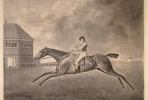 Equine Art / Gemälde von Rennpferden