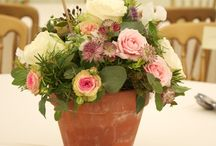 Terracotta flower arrangements