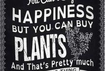 I love plants ♥