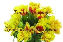 Tulip Video Clips / Time-lapse video clips of growing, opening, rotating and dying tulip flowers