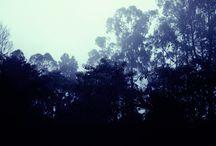 photograpic