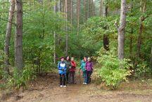 Nordic Walking- 29.09.2013r.