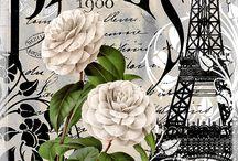 Parisian~Parisien / Illustrations of Paris / by Patricia Martin
