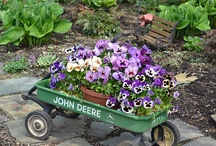 John Deere :) / by Gina Johnson