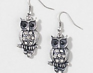Owl jewelry / by Shelly Queen
