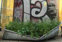 urban kraut's GreenFavs / Hier posten wir unsere snapshots aus der city! Habt ihr in Eurer Stadt auch etwas entdeckt? #urbankraut #GreenFavs