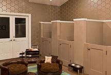 Dogs & dog rooms