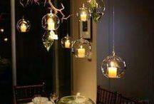 pohon akar lampu