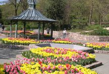 Local Parks / Parks for events in the DMV