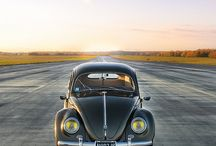 Beetles / Punch Buggy... you're it♡