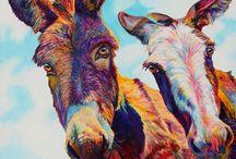 Bonnet d ânes