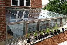 basement solarium