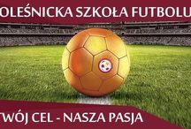 Oleśnicka Szkoła Futbolu / Zadaniem Oleśnickiej Szkoły Futbolu jest propagowanie aktywności fizycznej i umożliwienie jak największej liczbie dzieci z regionu oleśnickiego rozbudzenia pasji do piłki nożnej i rozwijania jej pod okiem wykwalifikowanych specjalistów.
