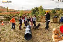 Intervenciones asistidas por animales / aquí podéis ver alguna de las actividades que hemos realizado  www.caniscat.es