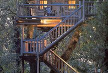 Tree House / by Grace Barbosa