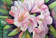 lilie - fiori di giglio