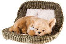 Дышащие животные игрушки Perfect Petzzz / Мы предлагаем вам познакомиться с новинкой, которая только начала пользоваться популярностью, и которая наверняка заставит вас задуматься о покупке – «Perfect petzzz». Кого не трогают и не вызывают умиление маленькие щенки или котята?  Что может в принципе быть милее, чем во сне мирно дышащий щенок или котенок?