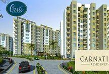Orris Carnation Residency Resale