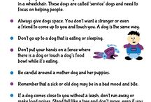 Kids & Pets / Tips for teaching kids to act responsibly around pets, including how to care for them and how to behave around strange dogs.