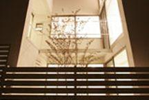 ICHIGO HOUSE PLANTS / PLANTS DESIGN