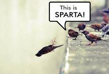 laugh! :)