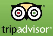 Reputation is Everything / Your online reputation go to. If you're don't have Trip Advisor, you don't have business. These days reputation is everything and with review sites like this, customer service better be a top priority!