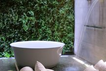 Bathroom Vertical Garden Ideas