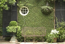 Things that I love 2 / gardening
