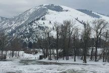 Montana Travels