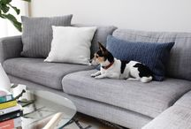 Interiors / We love the way these folks have designed their spaces. Check them out on Front + Main (blog.westelm.com)