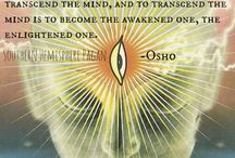 Meditation / Different Styles of Meditation Practice