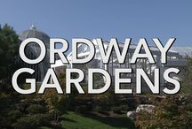 Ordway Garden / Ordway Garden at Como Park Zoo and Conservatory