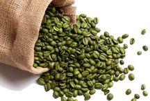 Green Coffee Bean Wholesale / Green Coffee Bean Wholesale @ sonofresco