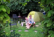 Real garden campers doing their thing! / You've seen the photos of tidy mown lawns, roses in full bloom, obliging poultry all ready and waiting. Now lets see what its like when the campers move in.. Send me your pics, or give me your name or email to let you upload your own. We'd love to share.
