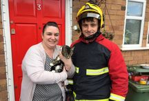 Animal Rescues / Animal rescues we've helped with across the West Midlands