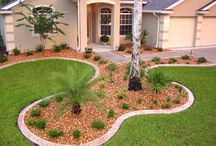 Garden - Front Yard Ideas