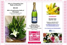 Send a Basket Promotions and Specials / Our Promotions and Specials Board. We cater for all occasions and events in your life. And for all those...'Just Because' moments too.