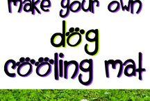 Dog Cooling Ideas