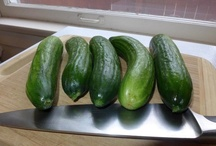 Organic Pickles / Great way to make your own organic pickles! You can add what ever flavor profiles you enjoy.