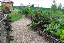 Vegetable garden / #garden #farmhouse #landscape design