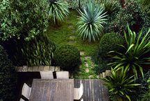 Garden - inspiration