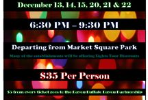 Wave Holiday Lights 2016 / We have amazing holiday lights tours and others this holiday season in Houston