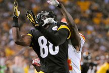 Pittsburgh Steelers / by Judy Morris